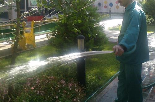 آب در استان بوشهر کیمیا است/  آبیاری با آب شرب هیچ توجیهی ندارد